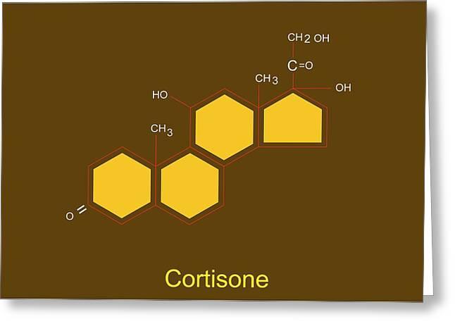 Corticosteroid Greeting Cards - Cortisone Molecule Greeting Card by Francis Leroy, Biocosmos