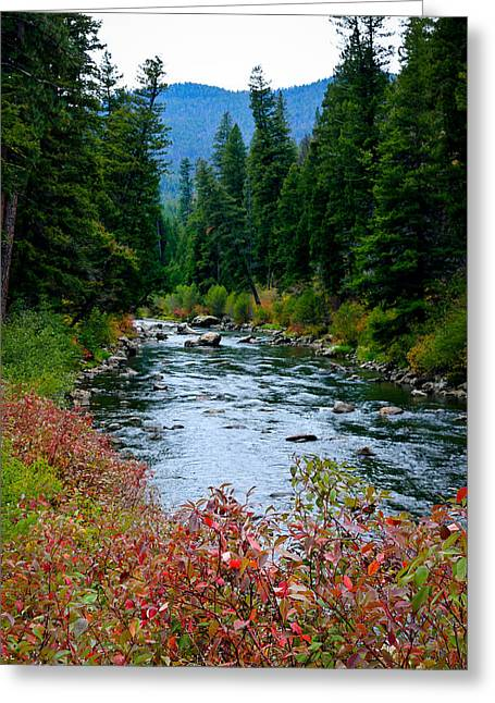 A River In Autumn Greeting Cards - Country Autumn River Greeting Card by Athena Mckinzie