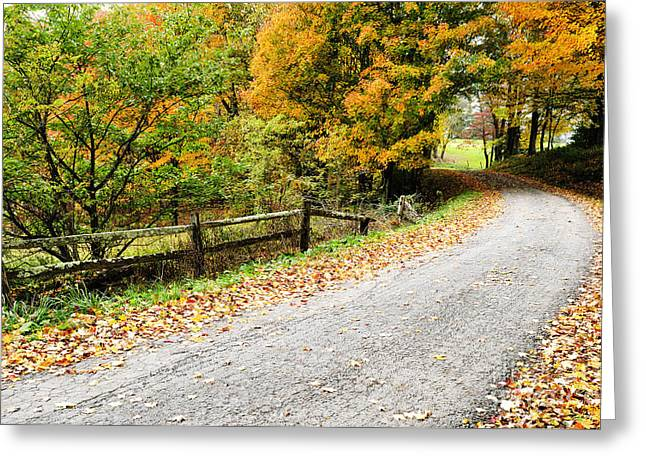 Nicholas Greeting Cards - Country Road in Autumn Greeting Card by Thomas R Fletcher