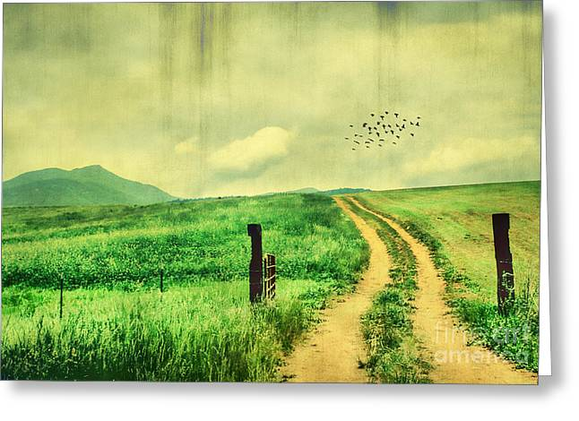 Paradise Road Greeting Cards - Country Roads Greeting Card by Darren Fisher