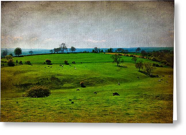 Moss Green Mixed Media Greeting Cards - Countryside Greeting Card by Svetlana Sewell