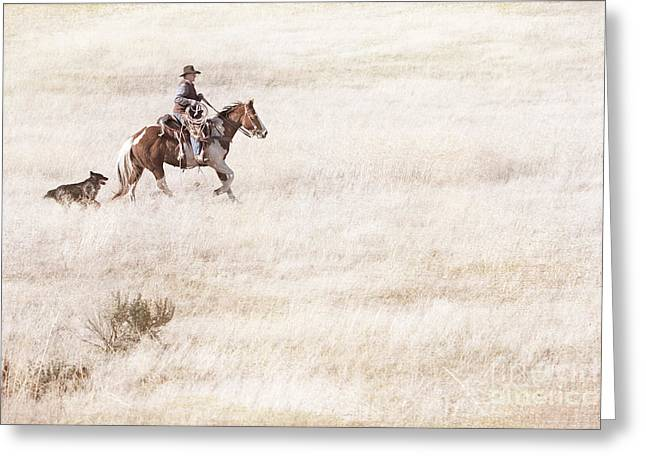 Working Cowboy Photographs Greeting Cards - Cowboy and Dog Greeting Card by Cindy Singleton