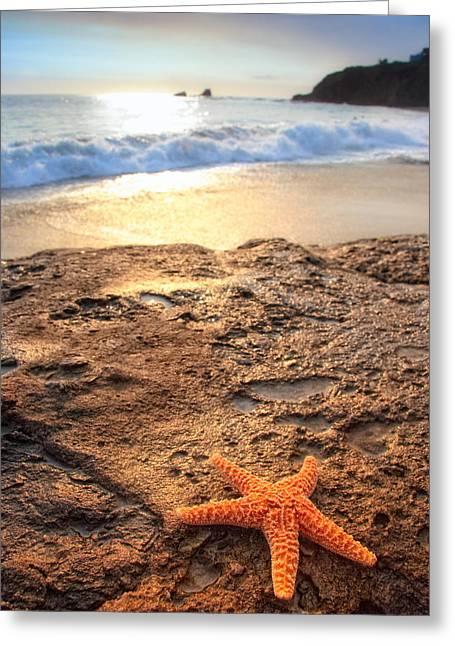 Beach Scenery Greeting Cards - Crescent Bay Laguna Beach California Greeting Card by Utah Images