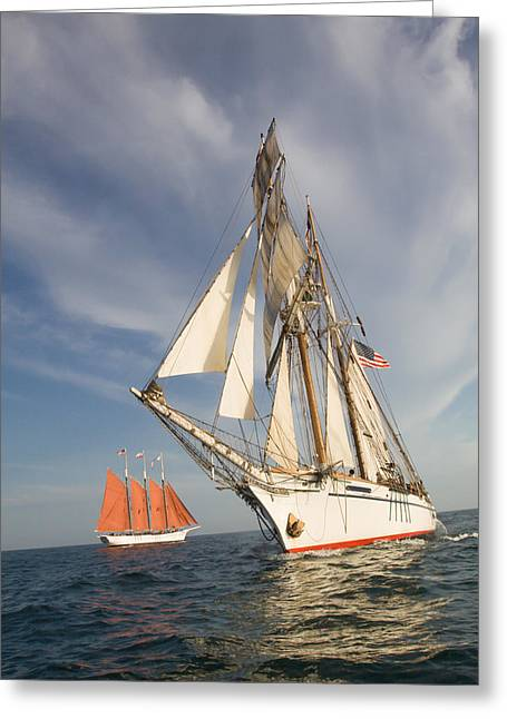 Tall Ships Greeting Cards - Crossing Paths Greeting Card by Cliff Wassmann