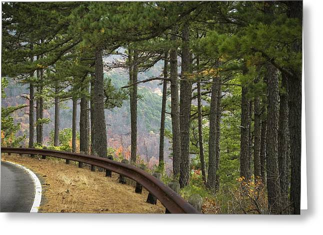 Curve In The Road Greeting Card by Cindy Rubin