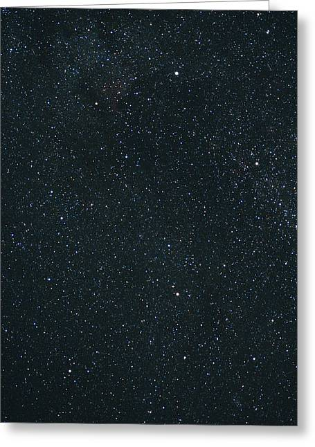 Cygnus Greeting Cards - Cygnus Constellation Greeting Card by John Sanford