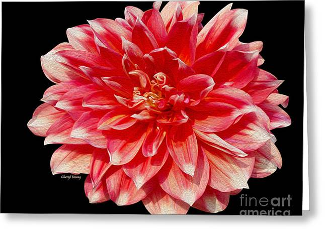 Wall Art For Your Home Or Office Greeting Cards - Dahlia Greeting Card by Cheryl Young