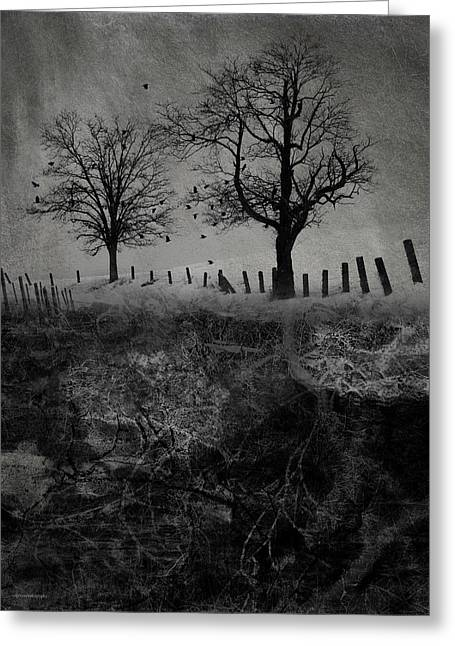 Dark Roost Greeting Card by Ron Jones