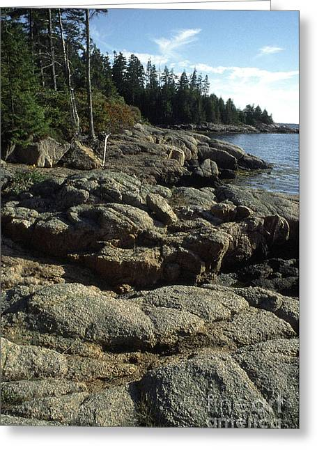 Deer Isle Shoreline Greeting Card by Thomas R Fletcher