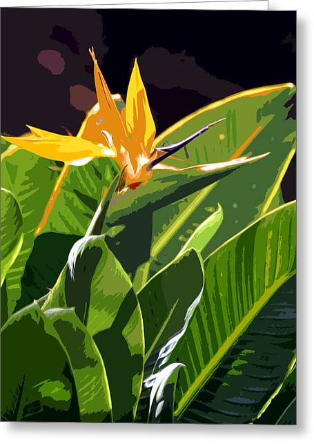 Tropical Birds Of Hawaii Greeting Cards - Digital Art Tropical series  Greeting Card by Pierre Leclerc Photography