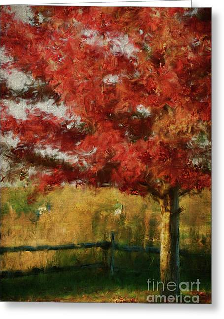 Grow Digital Art Greeting Cards -  Maple tree in full color/Digital Painting  Greeting Card by Sandra Cunningham