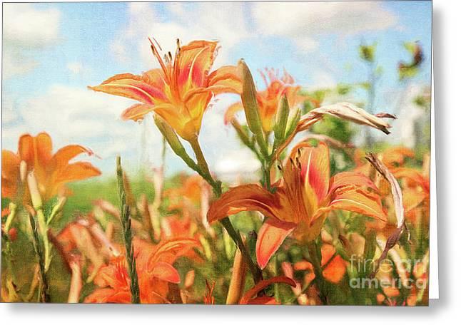 Floral Digital Art Greeting Cards - Digital painting of orange daylilies Greeting Card by Sandra Cunningham
