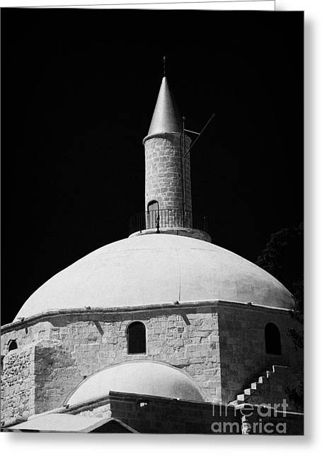 Umm Greeting Cards - Dome And Minaret Of Hala Sultan Tekke Mosque Larnaca Republic Of Cyprus The Umm Haram Mosque Greeting Card by Joe Fox