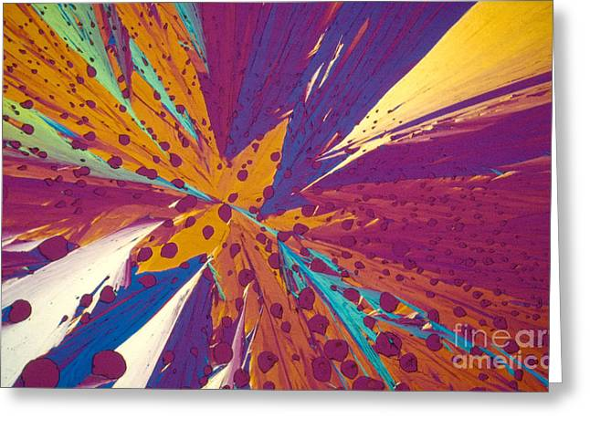Polarizing Greeting Cards - Dopamine Greeting Card by Michael W. Davidson