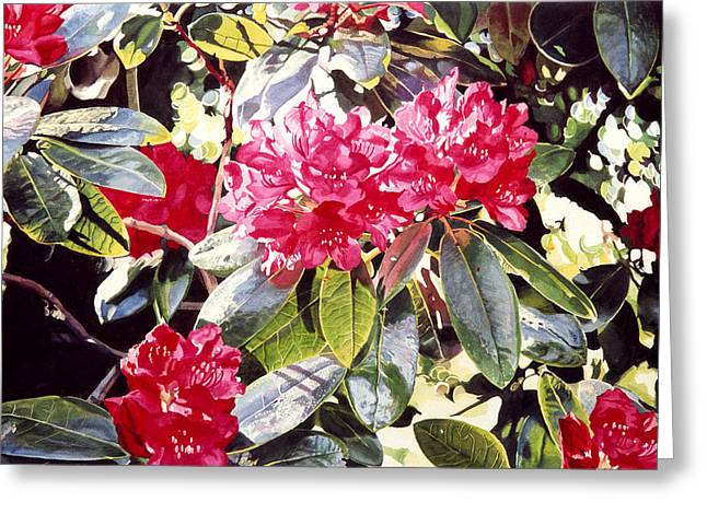 Rhododendrons Greeting Cards - Dreaming of April Greeting Card by David Lloyd Glover