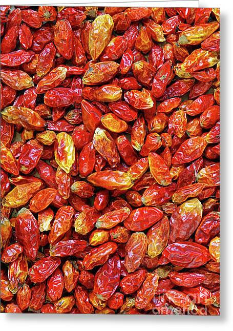 Asian Culture Greeting Cards - Dried Chili Peppers Greeting Card by Carlos Caetano