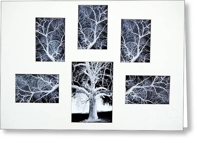 Reverse Art Greeting Cards - Dyptych X Five Greeting Card by Cindy Roesinger