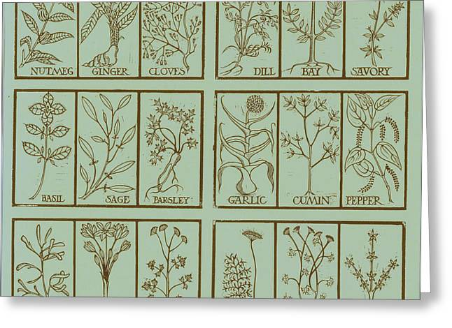 Ruse Greeting Cards - Edible Herbs Greeting Card by Science Source