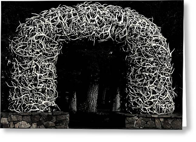Interior Design Greeting Cards - Elk Antlers Gate Jackson Hole WY Greeting Card by Christine Till