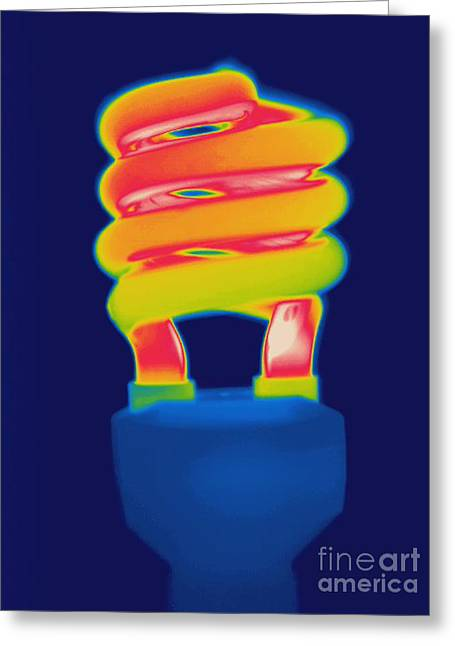 Energy Efficient Greeting Cards - Energy Efficient Fluorescent Light Greeting Card by Ted Kinsman