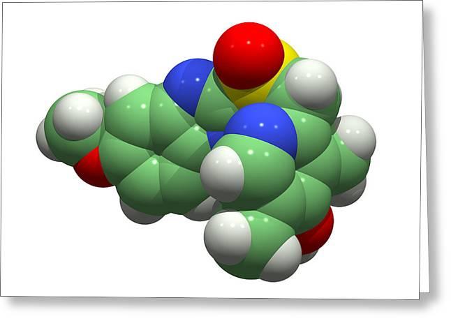 Drug Molecule Greeting Cards - Esomeprazole Drug Molecule Greeting Card by Dr Tim Evans