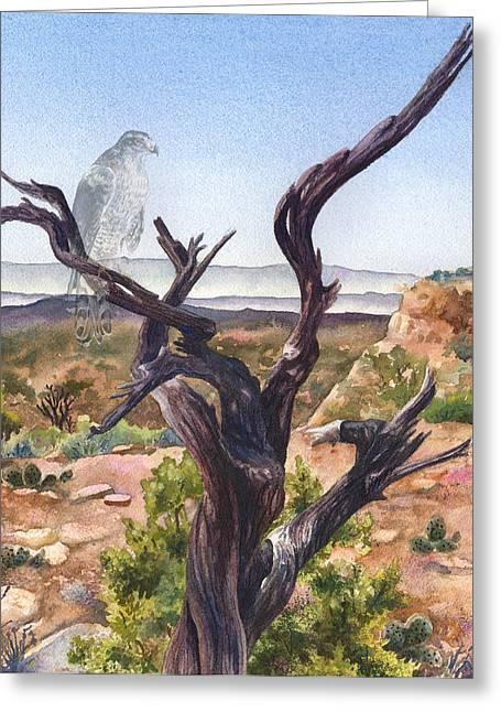 Southwestern Birds Greeting Cards - Eternal Vigil II Greeting Card by Anne Gifford