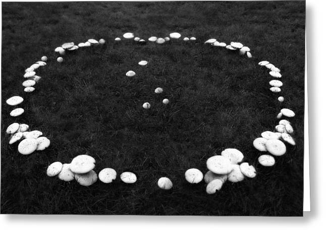 Storybook Greeting Cards - Fairy Ring Greeting Card by Mark Wagoner