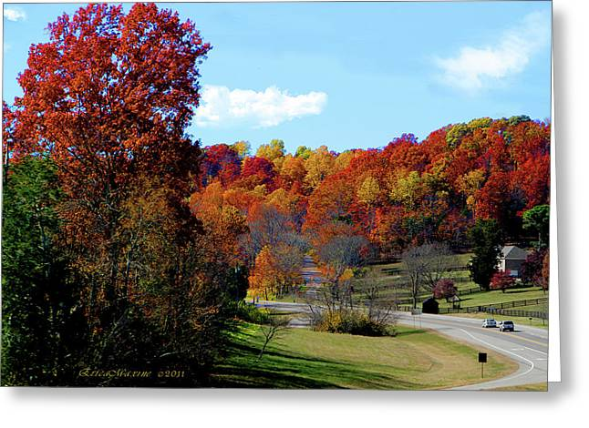 Recently Sold -  - Natchez Trace Parkway Greeting Cards - Fall Drive in Tennessee Greeting Card by EricaMaxine  Price