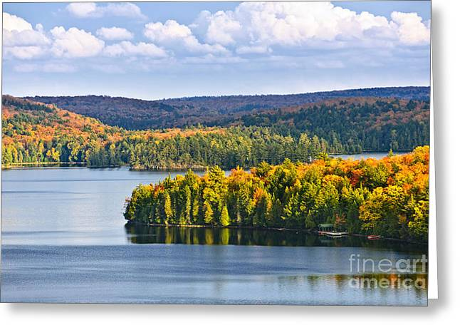 Yellow Reflections Greeting Cards - Fall forest and lake Greeting Card by Elena Elisseeva