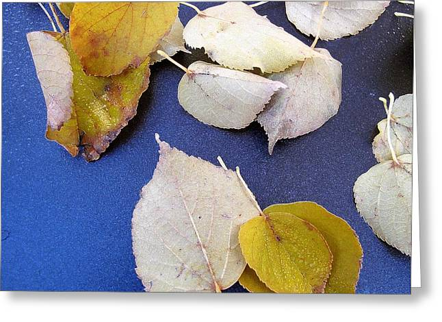 Autum Abstract Greeting Cards - Fall Leaves2 AEPD3  Greeting Card by Lyle Crump