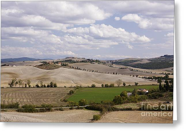Sienna Italy Photographs Greeting Cards - Farm Fields Greeting Card by Jeremy Woodhouse