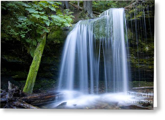 Plunge Greeting Cards - Fern Falls Greeting Card by Idaho Scenic Images Linda Lantzy