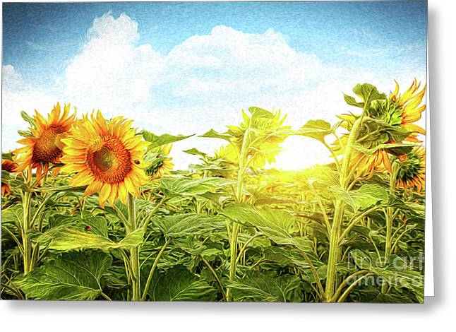 Spring Scenes Digital Greeting Cards - Field of colorful sunflowers/Digital Painting   Greeting Card by Sandra Cunningham