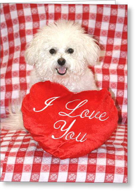 Soft Puppy Greeting Cards - Fifi Loves you Greeting Card by Michael Ledray