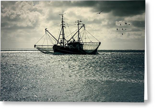 Seagull Greeting Cards - Fishing Boat Greeting Card by Joana Kruse