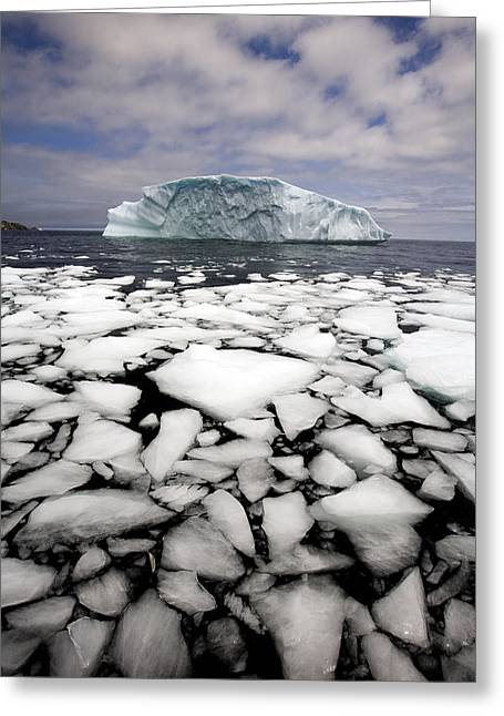 Jul08 Greeting Cards - Floating Ice Shattered From Iceberg Greeting Card by John Sylvester