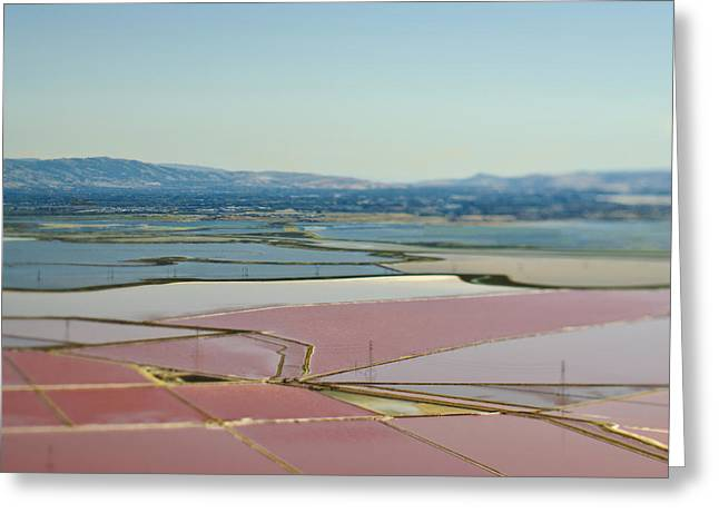 Floodplain Greeting Cards - Floodplain Farmland Greeting Card by Eddy Joaquim