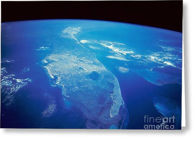 Florida Peninsula Greeting Cards - Florida From Space Greeting Card by Stocktrek Images