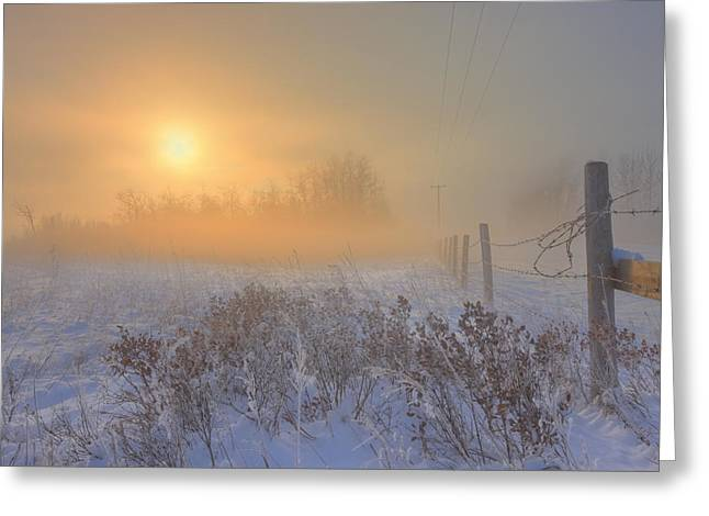 Barbed Wire Fences Greeting Cards - Foggy Winter Sunrise Over Barbed Wire Greeting Card by Dan Jurak