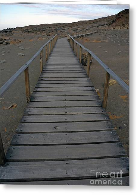 Footbridge On Volcanic Landscape Greeting Card by Sami Sarkis