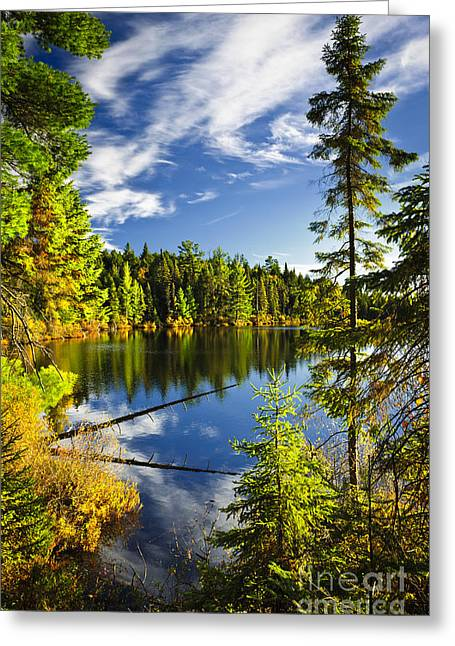 Reflecting Water Greeting Cards - Forest and sky reflecting in lake Greeting Card by Elena Elisseeva