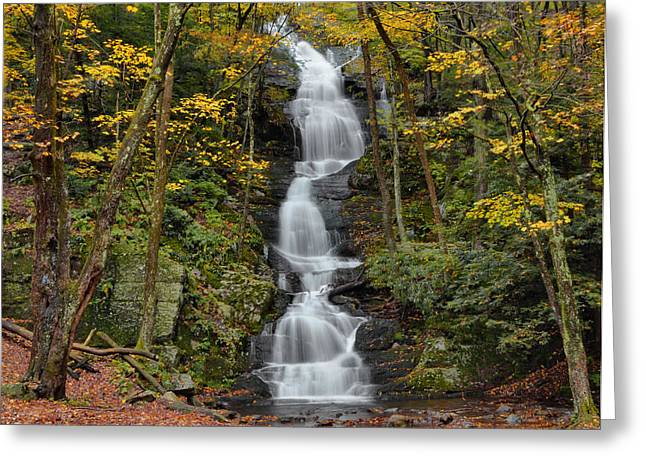 Stokes State Forest Greeting Cards - Forest Waterfall In Autumn Greeting Card by Stephen  Vecchiotti