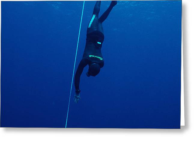 Free-diving Competitor Greeting Card by Alexis Rosenfeld