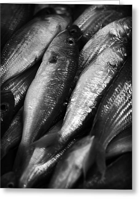 Fresh Fish Greeting Cards - Fresh fish at the Market Greeting Card by Zoe Ferrie