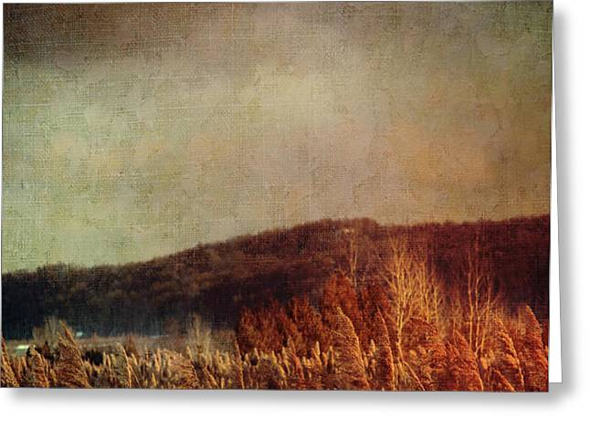 Frosty field in late winter afternoon Greeting Card by Sandra Cunningham
