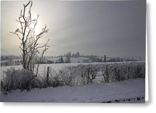 Foggy Day Greeting Cards - Frozen Britain Greeting Card by Angel  Tarantella