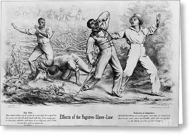 Fugitive Slave Act Greeting Cards - Fugitive Slave Law Greeting Card by Photo Researchers
