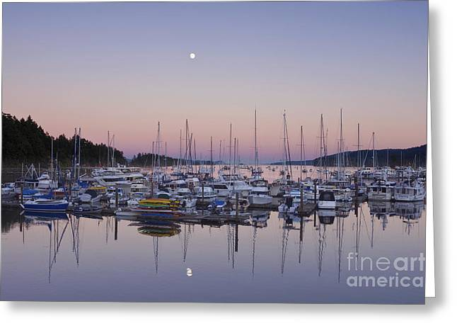 Bc Coast Greeting Cards - Full Moon Over Ganges Harbor Greeting Card by Rob Tilley
