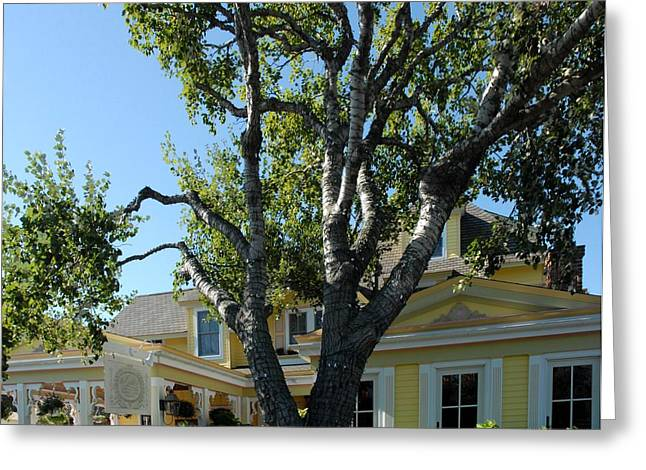 Old Inns Photographs Greeting Cards - Gables 211 Greeting Card by Joyce StJames