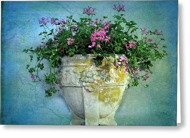 Stone Planter Greeting Cards - Garden Planter Greeting Card by Jessica Jenney